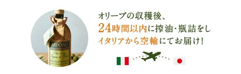 オリーブの収穫後、24時間以内に搾油・瓶詰をし、イタリアから空輸にてお届け