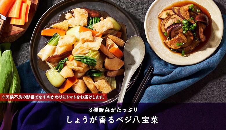 Kit2人前/[ヴィーガン]具だくさんベジ八宝菜