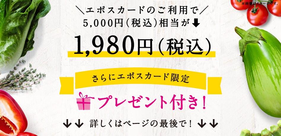 60%OFFで1,980円