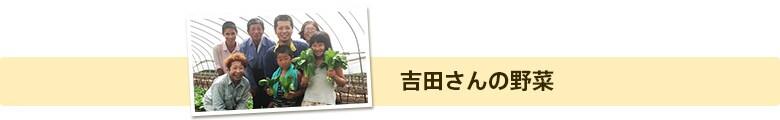 吉田さんの野菜