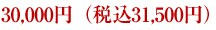 15,000円(税込 15,750円)