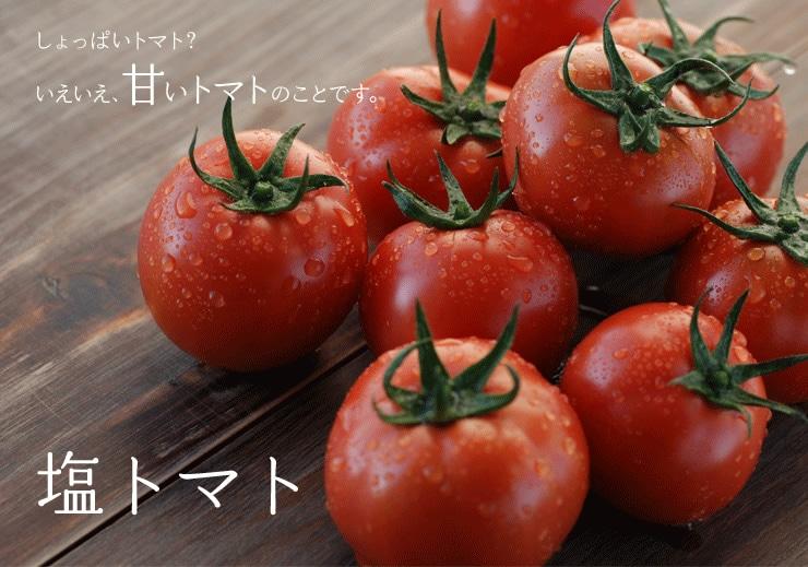 熊本県から塩トマトを産地直送!
