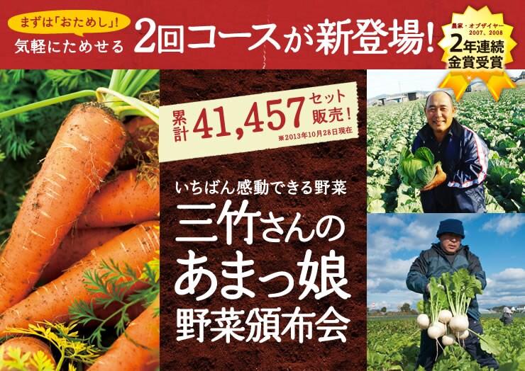 愛知県から三竹さんの「あまっ娘」野菜セットを産地直送!