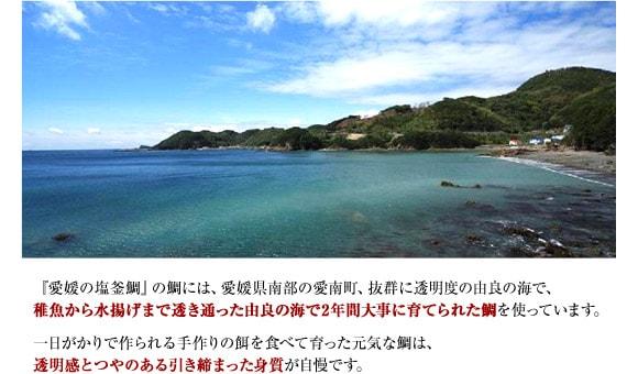 『愛媛の塩釜鯛』の鯛には、愛媛県南部の愛南町、抜群に透明度の由良の海で、稚魚から水揚げまで透き通った由良の海で2年間大事に育てられた鯛を使っています。一日がかりで作られる手作りの餌を食べて育った元気な鯛は、透明感とつやのある引き締まった身質が自慢です。