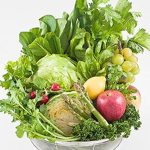 14種類もの野菜と果物をぎゅっと1本に