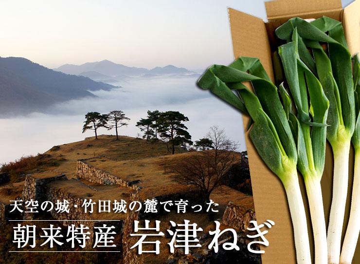 天空の城・竹田城の麓で育った朝来特産 岩津ねぎ
