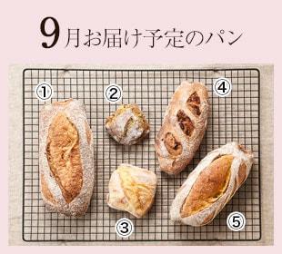 3月お届け予定パン