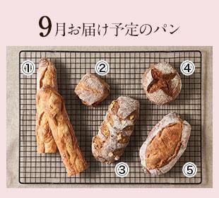 6月お届け予定パン