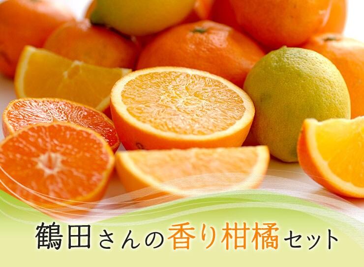 熊本から届くお母さんたちからの贈り物 鶴田さんの香り柑橘セット