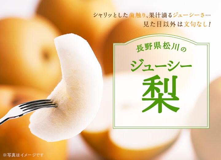 長野県松川のわけあり梨