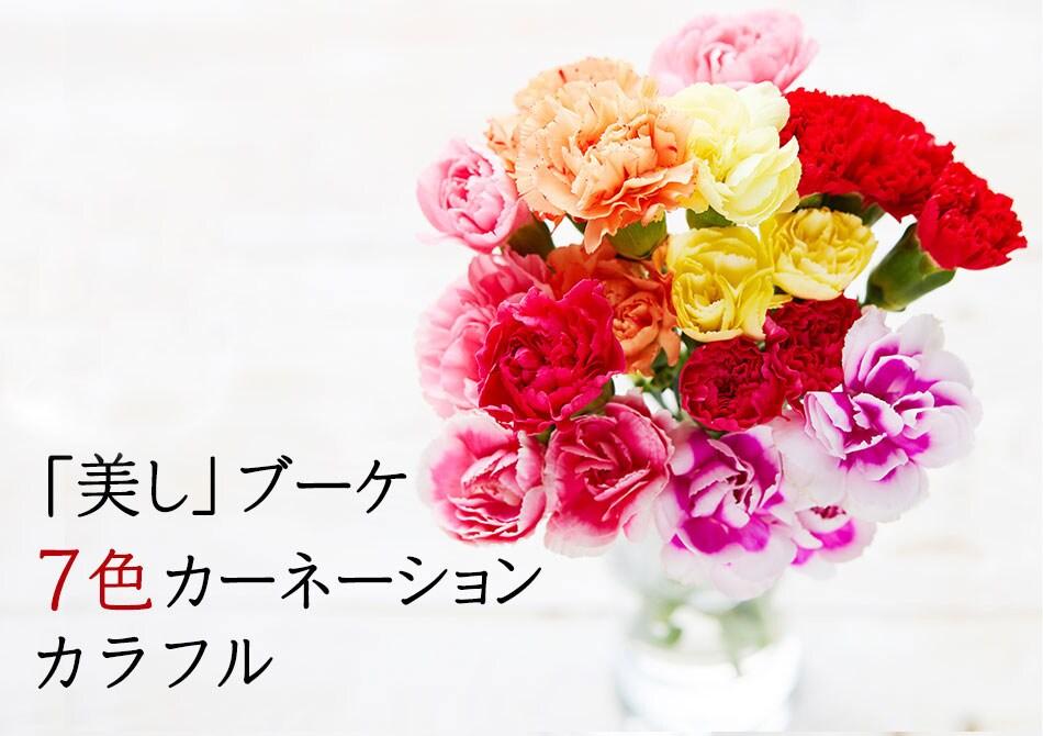「美し」ブーケ 7色カーネーション