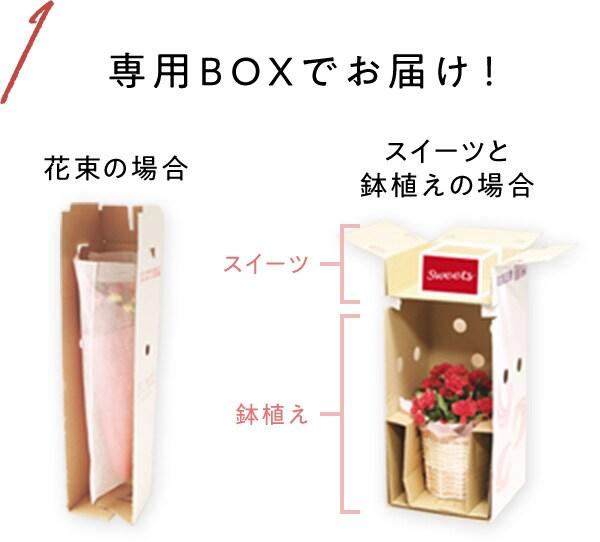 専用BOXでお届け!