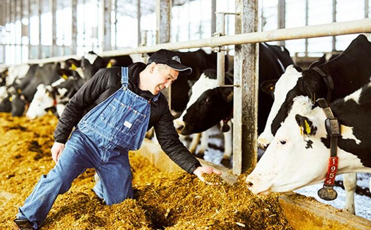 定番のミルクとこだわりのフレーバー3つをセットに:イメージ
