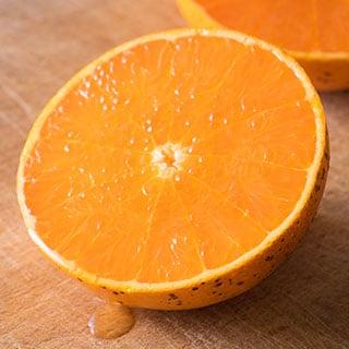 段々畑の柑橘便
