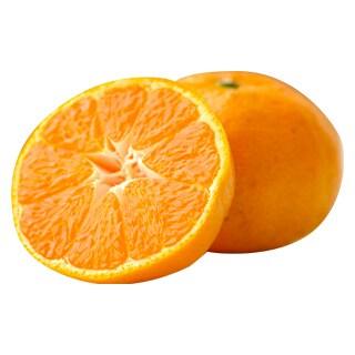 重さんの柑橘
