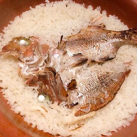 鯛めしご飯の画像
