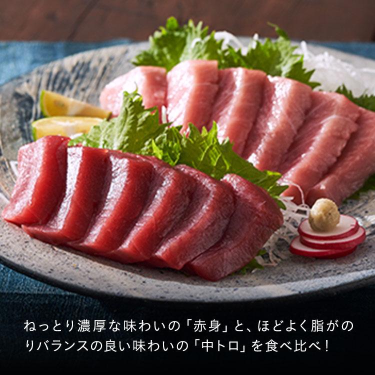 ねっとり濃厚な味わいの「赤身」と、ほどよく脂がのりバランスの良い味わいの「中トロ」を食べ比べ!
