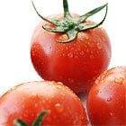 高糖度で大人気「酸味と甘みがぎゅっ♪ 塩トマト」入り おためしセット おいしっくすのおためしセットは毎週木曜日更新です
