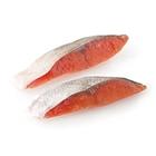 【とれピチ】活きのいいオス限定!味わい深い秋鮭