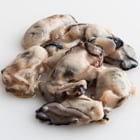 【予約】【とれピチ】ぷりっぷり大粒 瀬戸内産牡蠣