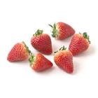 涼やかな酸味 いちご あぽろベリー(静岡県又は徳島県)