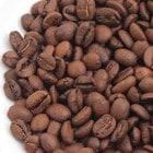 マイルドカルディ(豆)