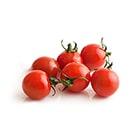 ころんと真っ赤な 情熱トマト(千葉県産)