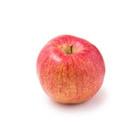 りんご 1玉(ふじ 青森県産 齊藤さん他)