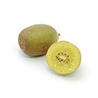酸味まろやか 有機栽培ゴールドキウイフルーツ(NZ産)