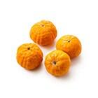 ピクシーオレンジ(NZ産)