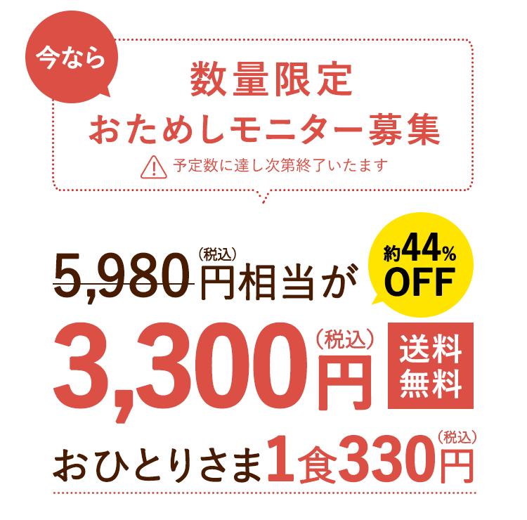 3,300円送料無料
