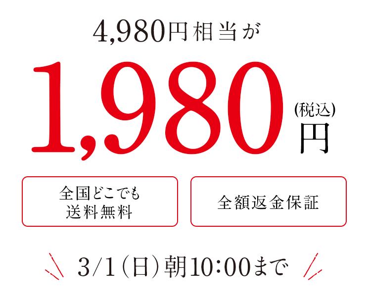 1,980円 送料無料