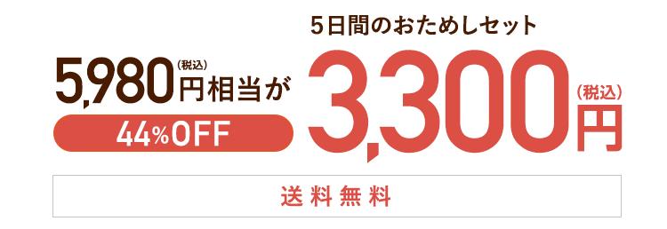初めての方限定 おためしセット3,300円