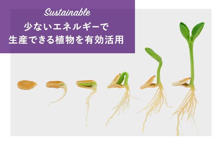 少ないエネルギーで生産される植物を有効利用