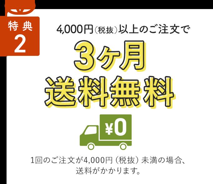 特典2/4,000円(税抜)以上のご注文で1ヶ月送料無料