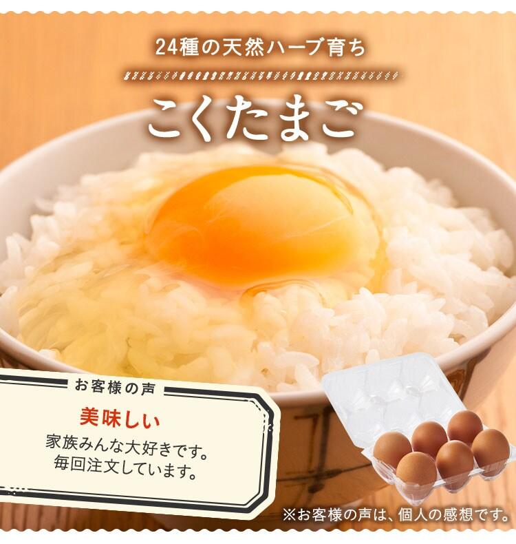 はちみつりんご酢+Fe