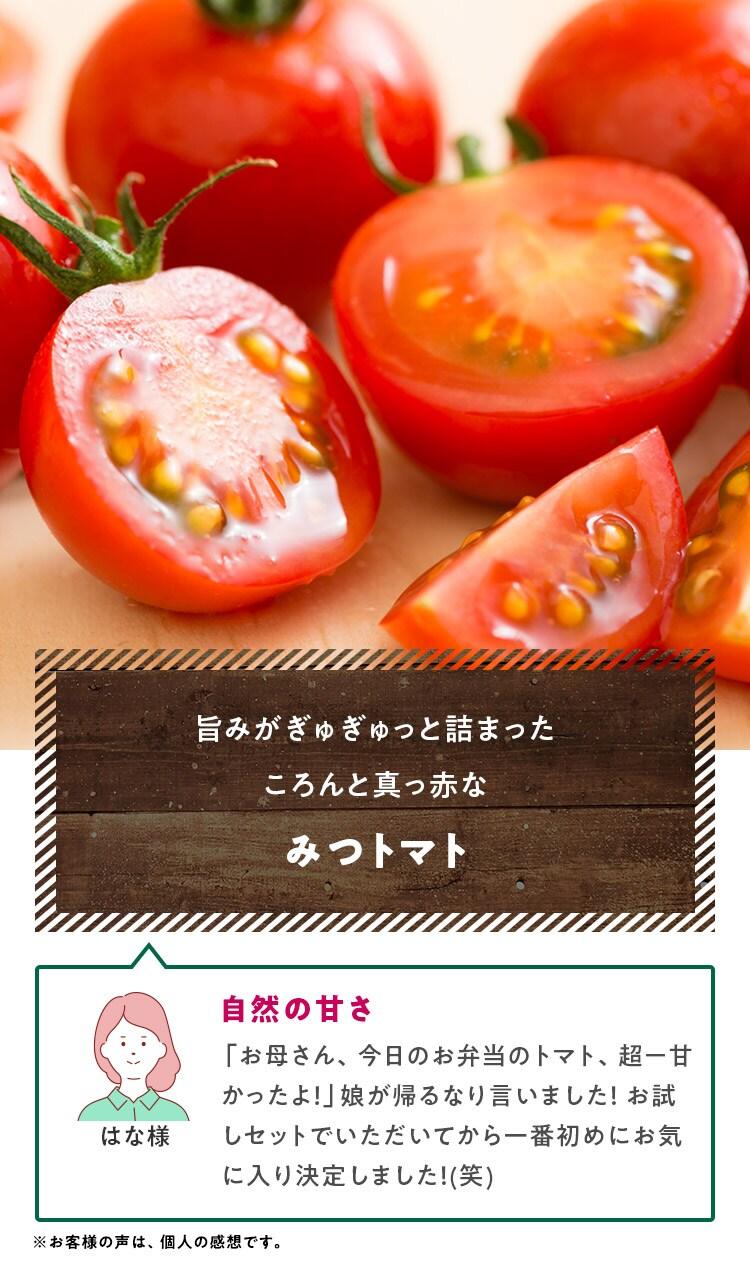 旨みがぎゅぎゅっと詰まったころんと真っ赤なみつトマト